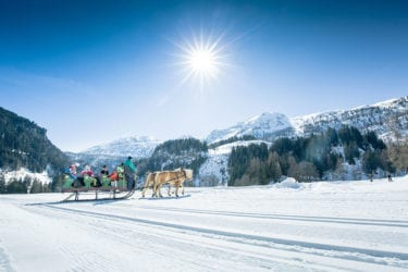 Pferdeschlittenfahrten in Obertauern – Salzburger Land